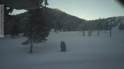 Webcam Zgornja Sorica: Soriška planina Litostrojska koča