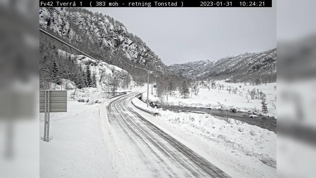 Webkamera Eikjelandsdalen: F42 Tverrå 1 (382 moh, Retning He