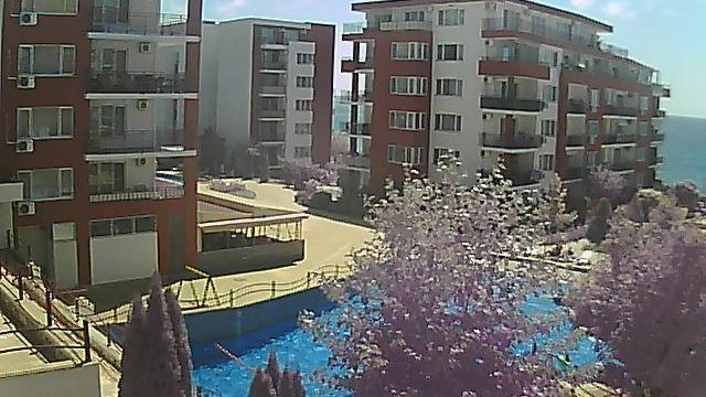 Веб-камера Солнечный берег (Болгария)