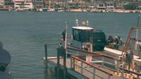 Newport Beach: Balboa Ferry - Dia