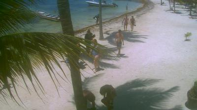 Daylight webcam view from Akumal: Beach Webcam
