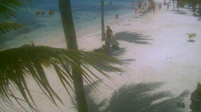 Vue webcam de jour à partir de Akumal: Beach Webcam