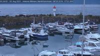 Hakvik: Narvik - Ankenes marina