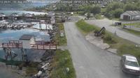 Hakvik: Narvik - Ankenes marina - El día