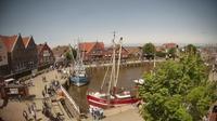 Wirrenburg: Livespotting - Neuharlingersiel, Hafen Ost - El día