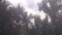 Paramaribo > East - Day time