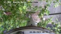 Castellana: EDUARDO DATO - Recent