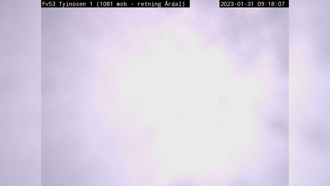 Webkamera Tyinkrysset: F53 Tyinosen (Retning mot Årdal. 1080