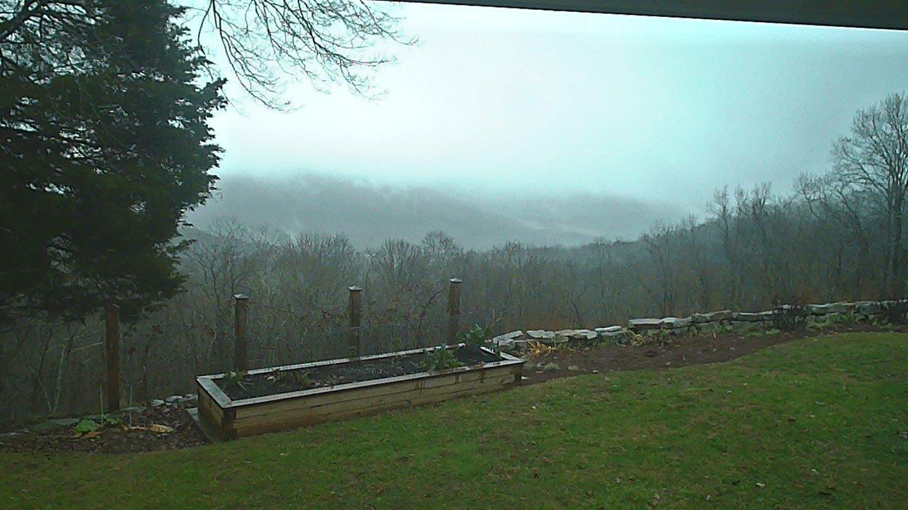 Webcam Woods Bluff: Tennessee − Bluff Woods − Sky View