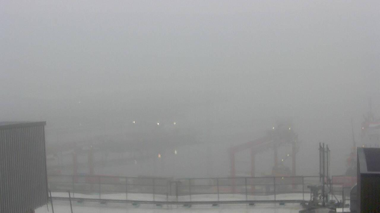 Webcam Oslo: harbour south