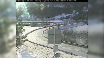 Seljord Daglicht Webcam Image