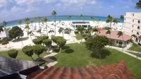 Noord overig: Eagle Beach: Bucuti & Tara Beach Resort Aruba: Eagle: Bucuti & Tara Beach Resort Aruba - Day time