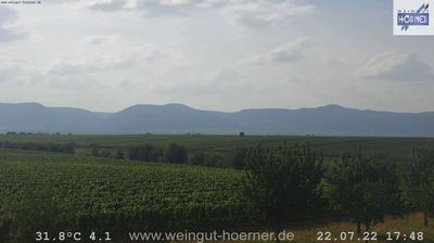 Thumbnail of Weingarten webcam at 10:08, Jan 27