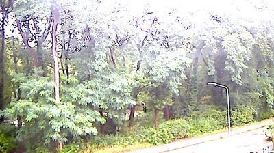 Hilversum: Zeverijn Park - Webcam