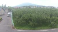 Itayanagi: Aomori - City Hall - Dia