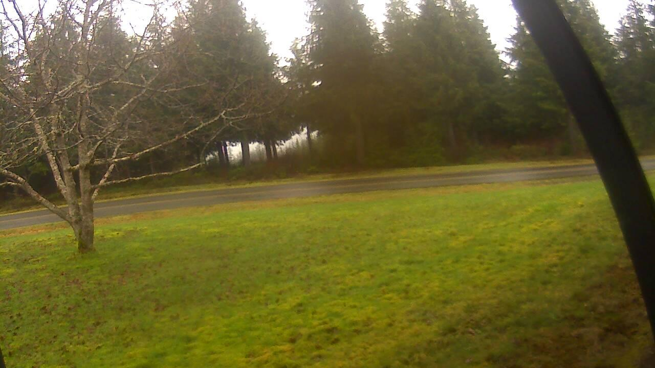 Webcam Waatch: Olympic National Park