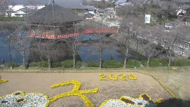 Webcam 桜井: Sakurai − Abemonju-in − Temple View