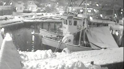 Webcam Drøbak: Guest harbour (02)