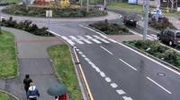 Ostrava: Mich�lkovick� - Hladnovsk�, sm?r Centrum - Overdag