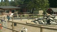 Vancouver: Maplewood Farm - Aktuell