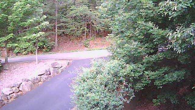 Webcam Dacula › North: United States