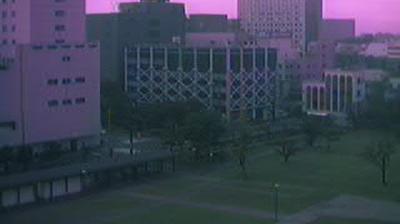 Webcam 福井市: City − City Hall − Central Park