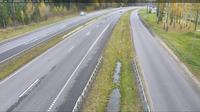 Syckauski sielski Saviet: Bobruysk M  km - Day time