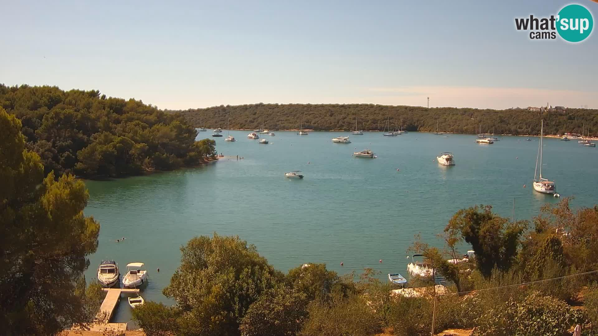Webcam Pula: Banjole bay