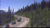 Paradise: Mount Rainier NP, Looking west from the Jackson Visitor Center - Overdag