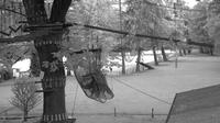 Gordola: Parco Avventura - Adventure Park - Seilpark