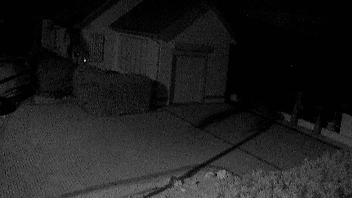 Webcam Driftwood Village: Cayman Chillin Cam 1, Grand Cay