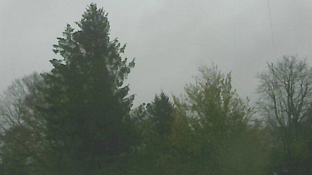 Webcam Neumünster: Gartenstadt