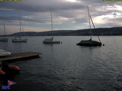 Thalwil › Ost: Zürichsee