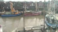 Neuharlingersiel: Livespotting - Hafen West - Dia