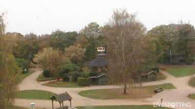 Webcam Daldorf: Erlebnissw