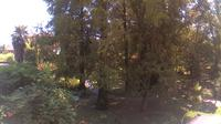 Ferrara: Botanical Garden - Day time