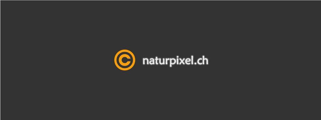 Unteriberg: Wetterbild Ybrig SZ