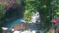 Tuban: Pool Web Cam - Dagtid