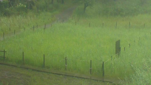 Webcam Deai: 黒沢湿原