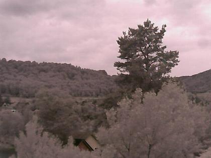 Küssaberg - Rheinheim