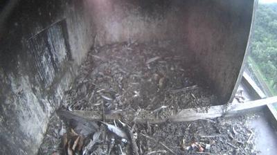 Vignette de Qualité de l'air webcam à 4:17, janv. 20