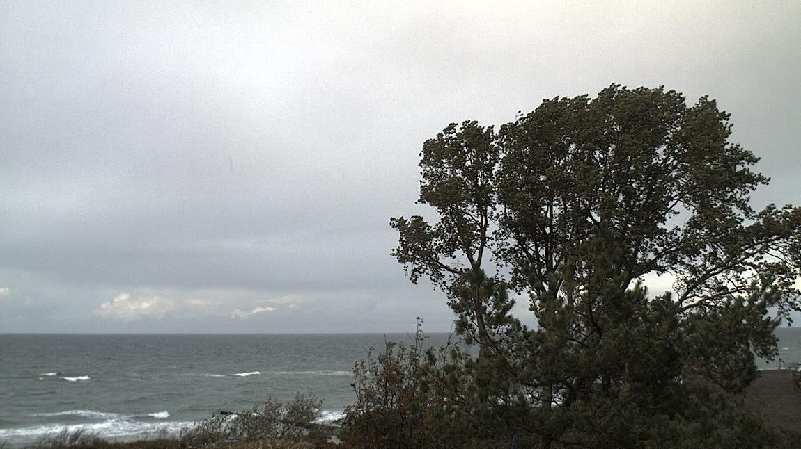 Webcam Ostseebad Ahrenshoop
