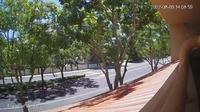 San Ramon › South-West: Street view - Dagtid