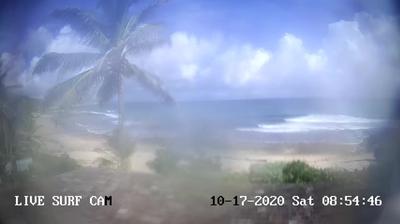 Bathsheba live webcam – Lige nu