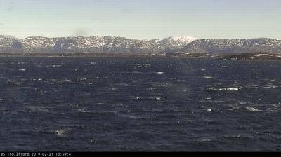 Webcam Tjørnsøya: Hurtigruten − MS Trollfjord