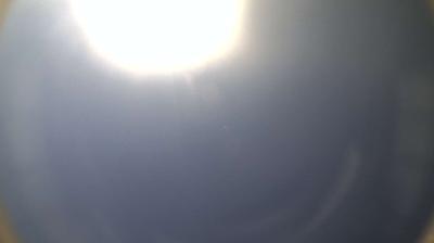 La Panne › Nord-ouest: beach - Beach