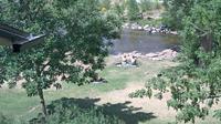 Boulder: Creek Flood Cam - Day time