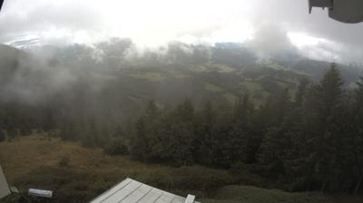 Gemeinde Waldegg