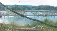 Seldovia: Boat Harbor - Overdag