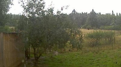 Daylight webcam view from Botrange: Walloon